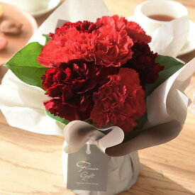 母の日 プレゼント 花 ギフト アレンジメント カーネーション 生花 鉢植え 2021Merci(メルシー)【送料無料】