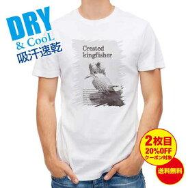 おもしろ Tシャツ 源流の番人ヤマセミ 釣り 魚 ルアー T シャツ メンズ 半袖 ロゴ 文字 春 夏 秋 インナー 安い 面白い 大きいサイズ 洗濯 ポリエステル ハロウィン 送料無料