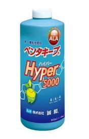 ペンタキープ Hyper5000(800ml入り)日照不足 対策 ハイパー クロロフィル 葉緑素 光合成能力 ALA 茎葉散布 硝酸還元酵素 光量不足 対策 アミノレブリン酸 根圏施用