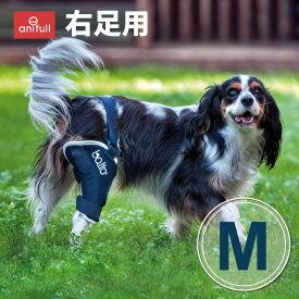 BT JUMP (膝サポーター)右 Mサイズ愛犬の膝のトラブルに膝関節サポーターバルト