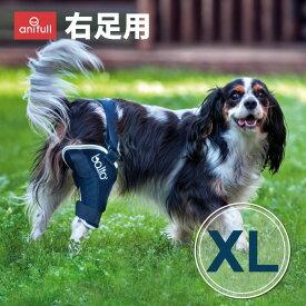 BT JUMP (膝サポーター)右 XLサイズ愛犬の膝のトラブルに膝関節サポーターバルト