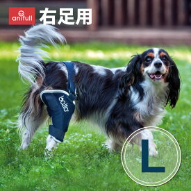 BT JUMP (膝サポーター)右 Lサイズ愛犬の膝のトラブルに膝関節サポーターバルト