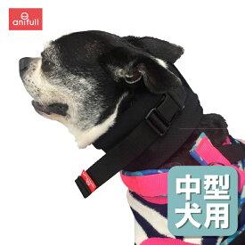 アニサポネック 中型犬用頸椎サポーター 首サポーターアニフル