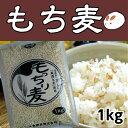 もち麦 ダイエット 1kg もちむぎ 食物繊維 豊富 テレビで話題 健康 もち麦 生活