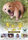 【バーゲンセール】【中古】DVD▼きな子 見習い警察犬の物語▽レンタル落ち