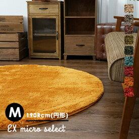 【在庫処分】ラグ ラグマット カーペット 円 絨毯 じゅうたん おしゃれ 洗える 滑りにくい オールシーズン 床暖房・HOTカーペット対応 グリーン 丸 北欧 リビング アンミン / EXマイクロセレクト 190Rcm(円形)