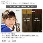 エブリヘアカラー(医薬部外品)エレファントグレー明るい髪に使用したイメージ