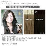 エブリヘアカラー(医薬部外品)エレファントグレー白髪のある髪に使用したイメージ
