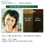 エブリヘアカラー(医薬部外品)フロッググリーン明るい髪に使用したイメージ
