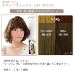 エブリヘアカラー(医薬部外品)キャットグレージュ明るい髪に使用したイメージ