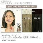 エブリヘアカラー(医薬部外品)キャットグレージュ白髪のある髪に使用したイメージ