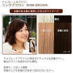 エブリヘアカラー(医薬部外品)ミンクブラウン白髪のある髪に使用したイメージ
