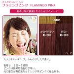 エブリヘアカラー(医薬部外品)フラミンゴピンク明るい髪に使用したイメージ