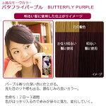 エブリヘアカラー(医薬部外品)バタフライパープル明るい髪に使用したイメージ