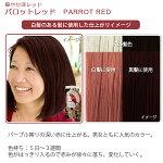 エブリヘアカラー(医薬部外品)パロットレッド白髪のある髪に使用したイメージ
