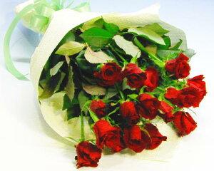 バラの花束 お買い得赤バラ20本の花束 お誕生日 プレゼント ギフト 結婚祝い 記念日 退職祝い いい夫婦の日 送料無料