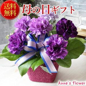 【まだ間に合う!母の日ギフト 母の日 プレゼント】mother2021【送料無料】青のカーネーションムーンダスト アレンジ 花束
