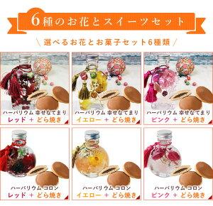6種のお花とスイーツセット