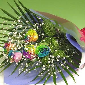 【送料無料】虹色のバラ レインボーローズ5本の花束カスミソウ付き】女性 ギフト 花 ギフト 誕生日 プレゼント・記念日・お祝い・お見舞い 結婚祝 お中元 ランキング 花束 ホワイトデー