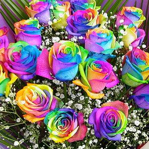 虹色のバラ レインボーローズミラクル 誕生日 結婚祝い
