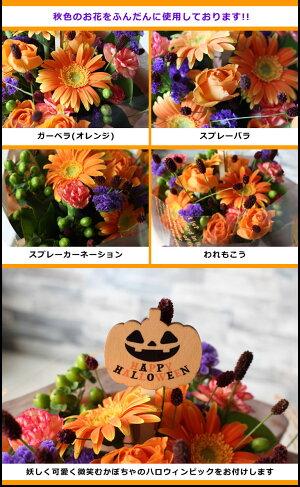秋色のお花がいっぱい