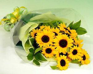【季節のお花・花束】【あす楽】 大輪ひまわり20本の花束 お誕生日
