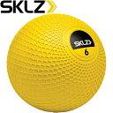 Skl 029010