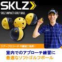 ヤマニゴルフ インパクト ゴルフボール 12個入り SKLZ SKMGNT26 YAMANI GOLF ゴルフ練習用品