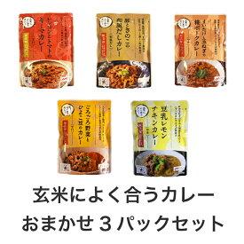 【収穫祭】【玄米によく合うカレー】おまかせ3パックセット