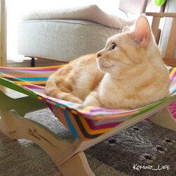 【全額返金キャンペーン】Catoneer一生モノの猫ハンモック猫ハンモック猫ハンモック猫ベッド洗える猫ベッドキャットハンモック猫用ハンモックネコハンモックネコベッドねこはんもっく夏冬用暖かいあったかおしゃれギフトラッピング不可