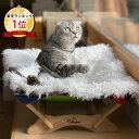 【選べる2点セット】 Catoneer 一生モノの猫ハンモック 4Claws ふわもふ猫ベッド洗える おしゃれ 猫用ベッド ネコベ…