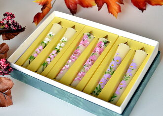 Candle ' bond-bond candle ' Shion, cherry blossom, dogwood 3 No. 6 pieces ■ utility candle ■ candles ■ gift for