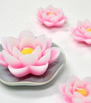 """Kameyama candle gift """"清蓮灯"""""""