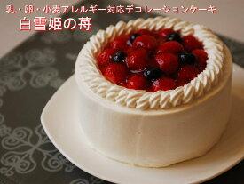 乳・卵・小麦を使用していないスイーツ アレルギー対応デザート 「白雪姫の苺」バースデーケーキ 誕生日