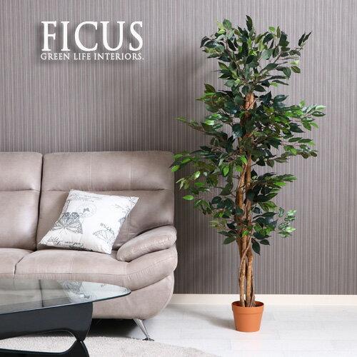 【送料込】 観葉植物 フェイク FICUS フィカス ゴムの木 150cm 大型 造花 インテリア 植物 フェイクグリーン 人工観葉植物 作り物 リアル 大きめ 大きい 本物そっくり おすすめ おしゃれ かわいい プレゼント 送料無料