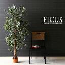 【送料込】 観葉植物 フェイク FICUS フィカス ゴムの木 160cm 大型 造花 インテリア 植物 フェイクグリーン 人工観葉…