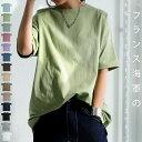 バスクT Tシャツ レディース トップス 半袖 綿100 綿・8月19日10時〜再再販。メール便不可(REV)【CP218】