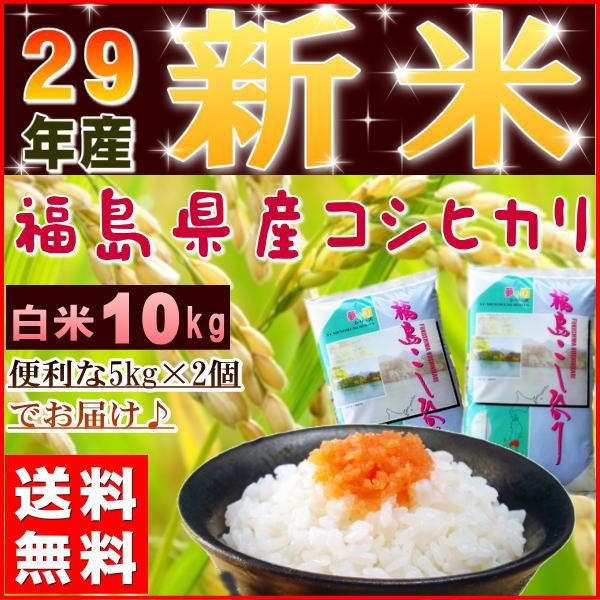 コシヒカリ 10kg(5kg×2袋) 新米 福島県産 お米 米 29年産 送料無料『29年福島県産コシヒカリ(白米5kg×2)』 【RCP】