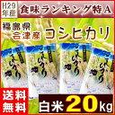 コシヒカリ 20kg(5kg×4袋) 米 福島県産 お米 29年産 会津産 送料無料 特A 『29年福島県会津産コシヒカリ(白米5kg×4)』 【RCP】