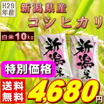 『新潟県産コシヒカリ白米10K』【RCP】【米10kg送料無料】