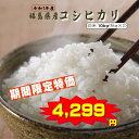 コシヒカリ 10kg(5kg×2袋) 福島県産 お米 元年産 送料無料 『令和1年福島県産コシヒカリ(白米5kg×2)』 【RCP】