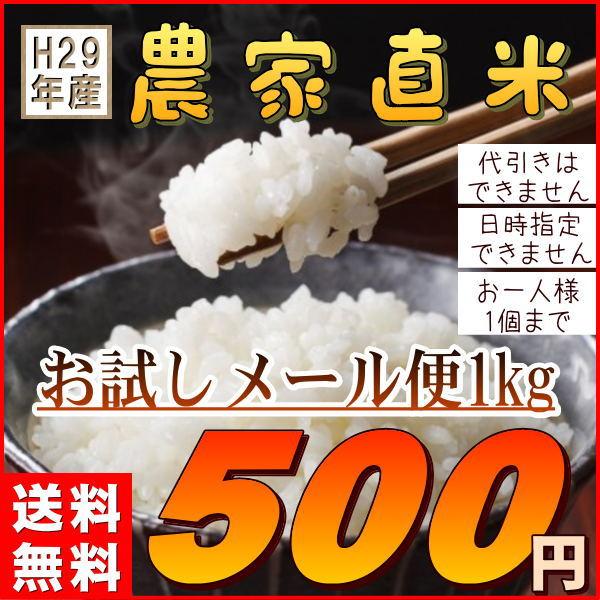 米 送料無料1kg 国内産ブレンド米 訳あり (お試し1キロ) 安い『29年農家直米白米1kg』