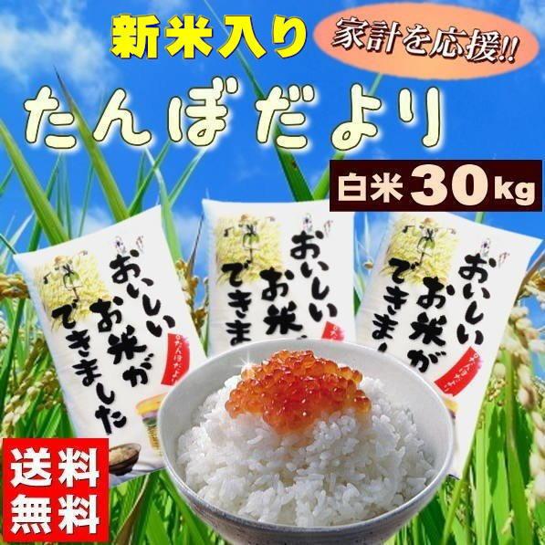 米 30kg お米 白米 安い (10kg×3袋) 訳あり ブレンド米 国内産 送料無料 『たんぼだより(白米10kg×3)』【RCP】