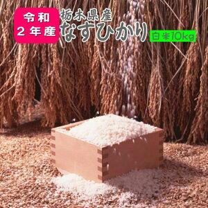 米 10kg お米 2年産 栃木県産 送料無料『令和2年栃木県産なすひかり白米10kg』【RCP】