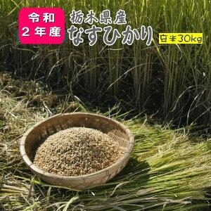 米 30kg 玄米 お米 2年産 栃木県産 送料無料 一等『令和2年栃木県産なすひかり玄米30kg』【RCP】
