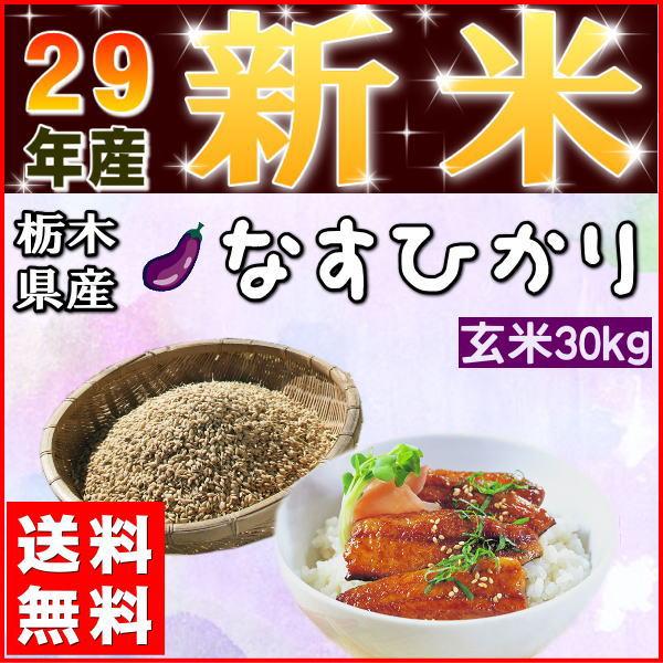 新米 30kg 玄米 お米 米 29年産 栃木県産 送料無料 一等『29年栃木県産なすひかり玄米30kg』【RCP】
