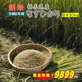 新米 30kg 玄米 お米 2年産 栃木県産 送料無料 一等『令和2年栃木県産なすひかり玄米30kg』【RCP】