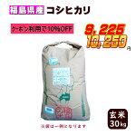 新米30kgコシヒカリ玄米お米30年産福島県産送料無料一等『30年福島県産コシヒカリ玄米30kg』【RCP】
