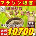 『新潟県産コシヒカリ玄米30K』