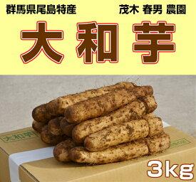 群馬県尾島特産 山芋 大和芋 B棒 3kg お買い得品 やまいも とろろいも やまといも とろろ芋 山芋とろろ